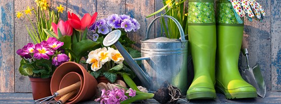 Image for Gardening in April